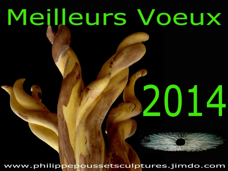 2014 Voeux_10