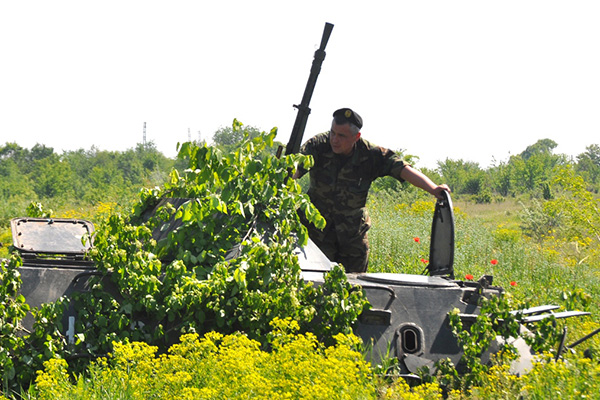 Forces armées moldaves 10139