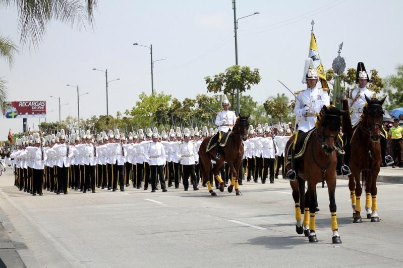 Armée Equatorienne/Fuerzas Armadas del Ecuador - Page 4 1211