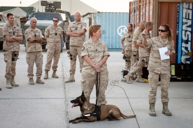 Animaux soldats - Page 2 126