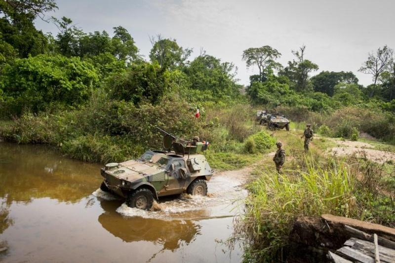 Intervention militaire en Centrafrique - Opération Sangaris - Page 6 1593
