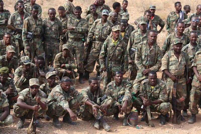 Ethiopian National Defense Force (ENDF) 1599