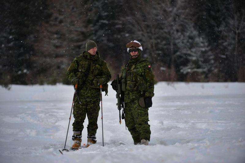 Armée canadienne/Canadian Armed Forces - Page 16 1669