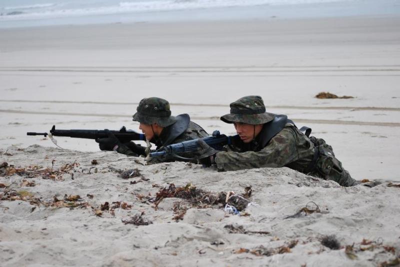 Armée Japonaise/Japan Self-Defense Forces - Page 17 2396