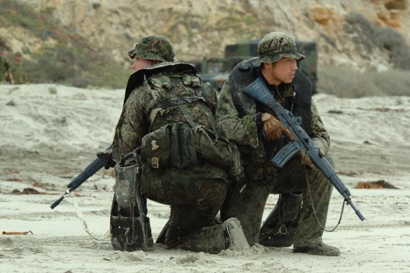 Armée Japonaise/Japan Self-Defense Forces - Page 17 2511