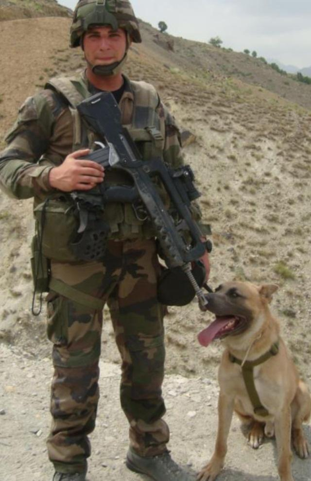 Animaux soldats - Page 3 2580