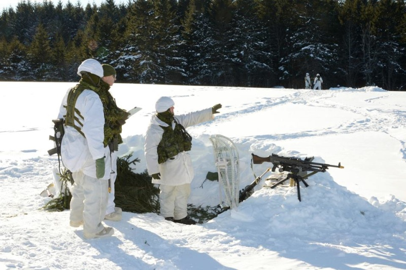 Armée canadienne/Canadian Armed Forces - Page 16 3316