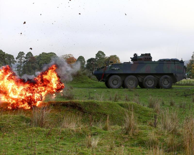 Armée Irlandaise/Irish Armed Forces - Page 2 344