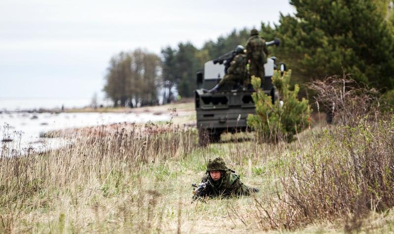 Armée Estonienne/Estonian Army - Page 2 3565