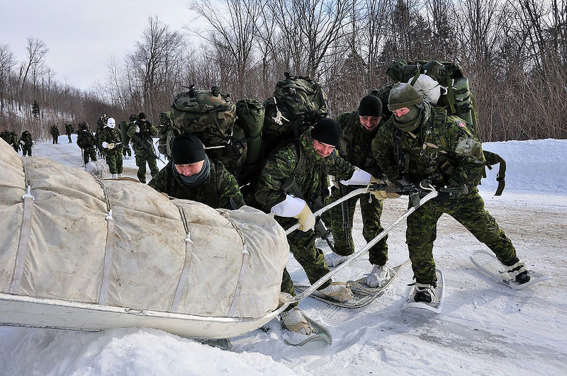 Armée canadienne/Canadian Armed Forces - Page 16 4174