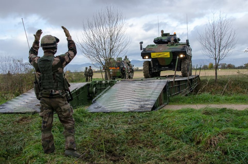 Armée Française / French Armed Forces 491
