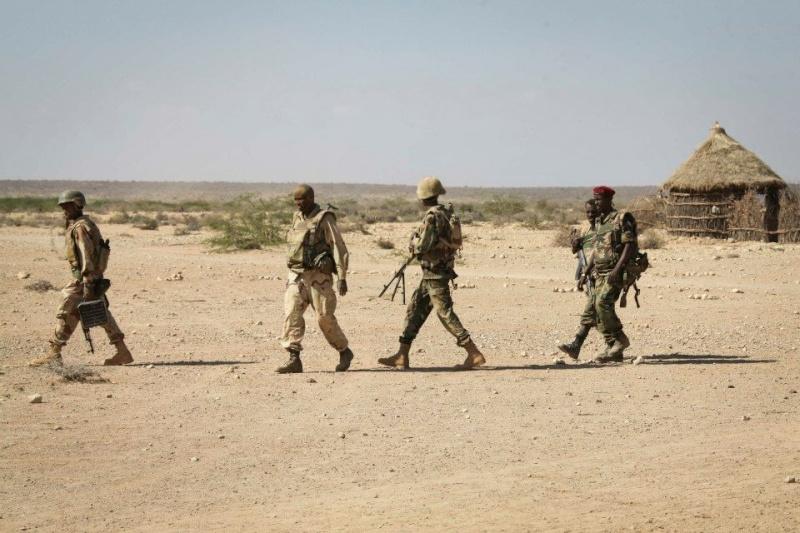 Armée djiboutienne / Djibouti National Army - Page 2 5173