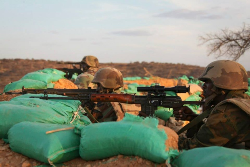 Armée djiboutienne / Djibouti National Army - Page 2 6125