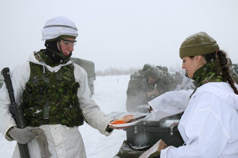 Armée canadienne/Canadian Armed Forces - Page 16 6134