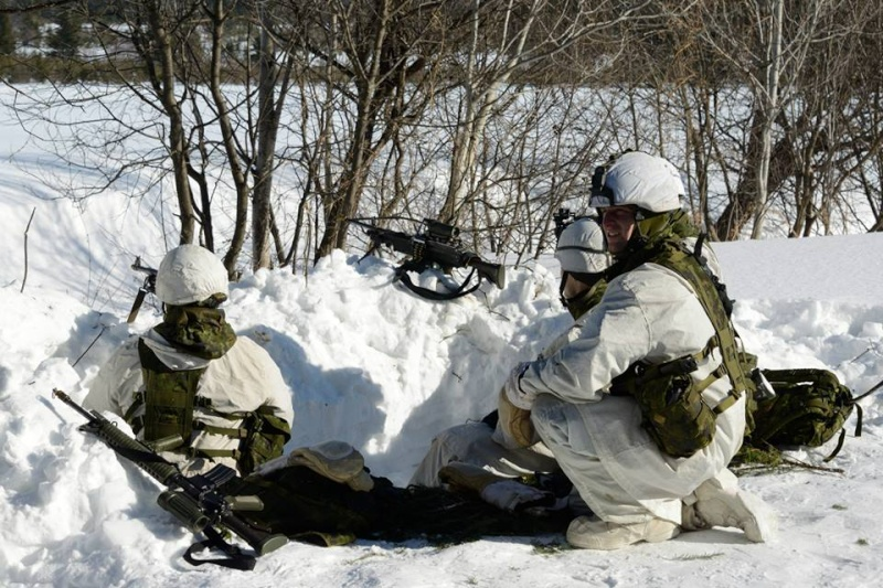 Armée canadienne/Canadian Armed Forces - Page 16 7135