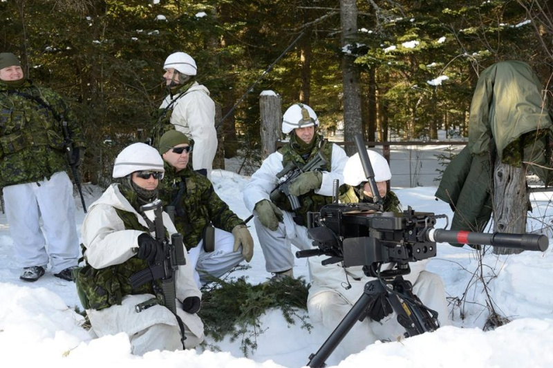 Armée canadienne/Canadian Armed Forces - Page 16 8113