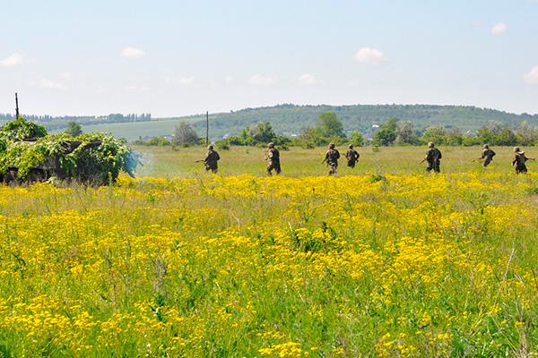 Forces armées moldaves 9164