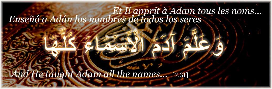Apprendre les langues arabe et française