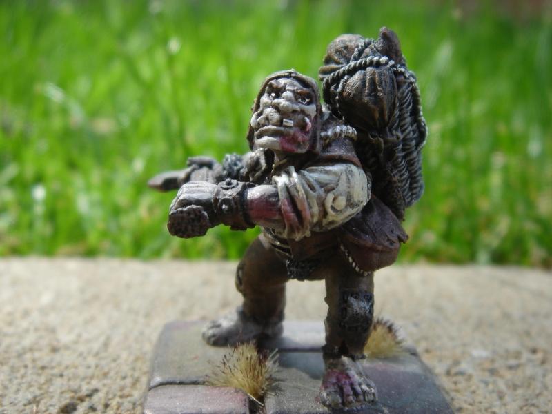 Ogre Bodyguard Dsc03518