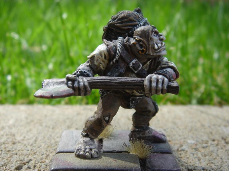 Ogre Bodyguard Dsc03519