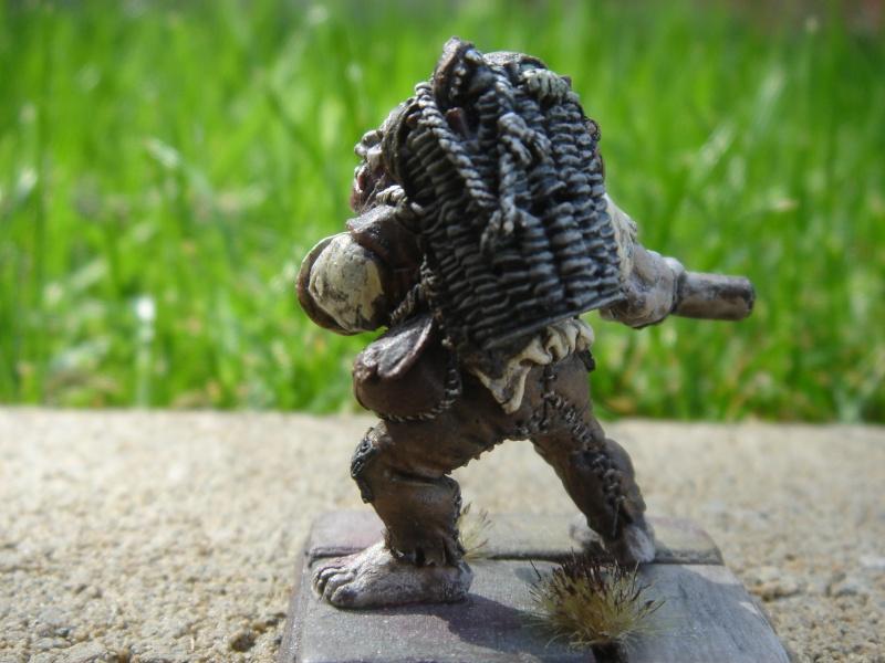 Ogre Bodyguard Dsc03521