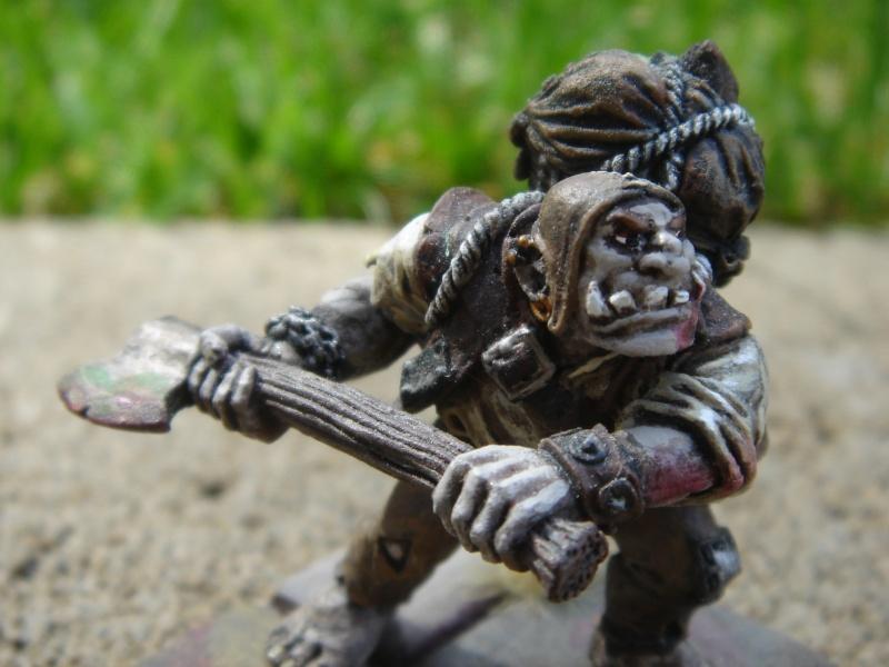 Ogre Bodyguard Dsc03522