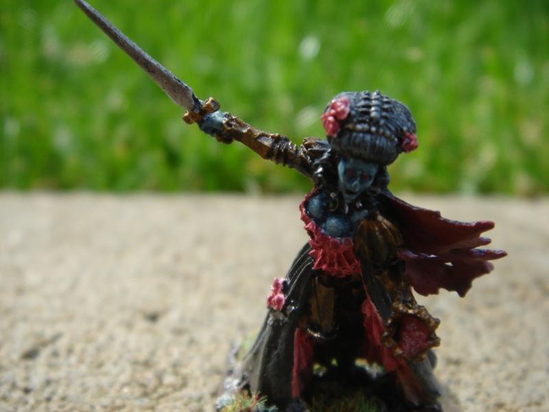 undead - Undead Warband Dsc03610