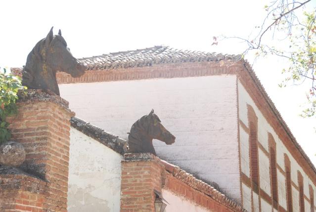 Palacio El Rincón 18_dsc10