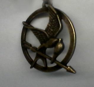Hunger Games - RP APPS Mockin10