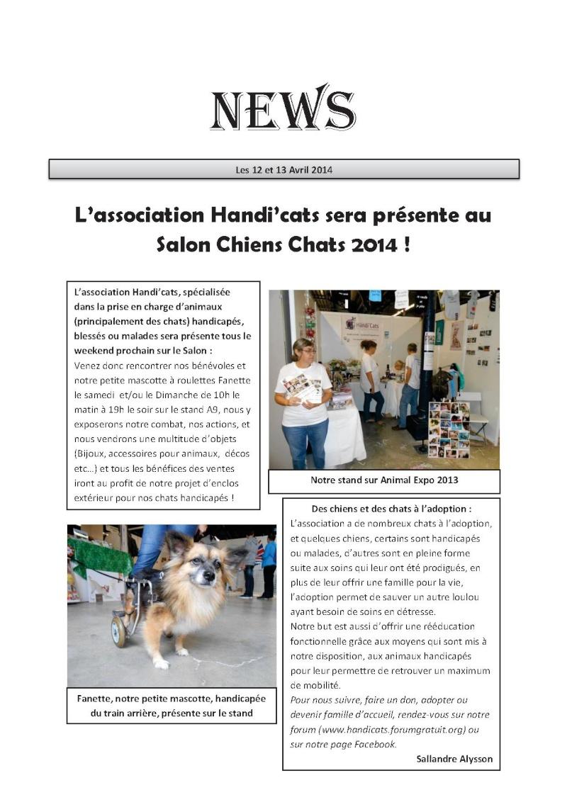 Salon chiens chats 2014 - Page 7 Handi_10