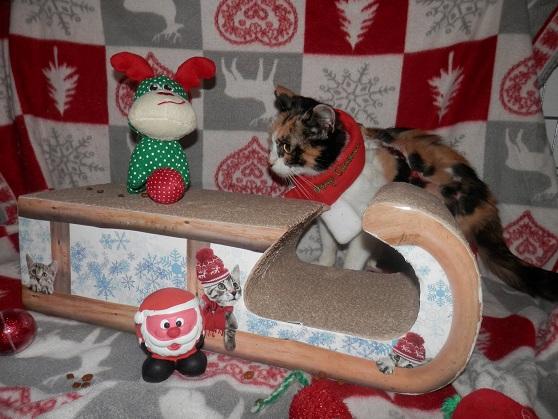 La Guadeloupéenne de Noël ... Pc181419