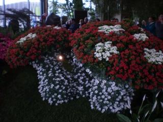Les Floralies à Nantes -2014 Photo664