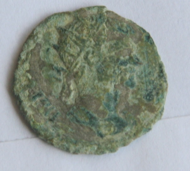 Collection Volubilis - Page 3 Radie_12