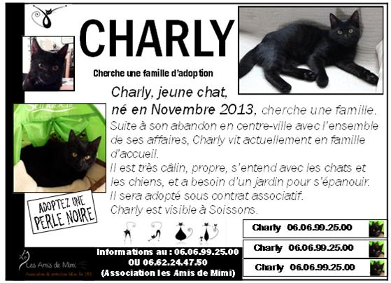 LES AFFICHES POUR ADOPTION - Page 2 Charly10