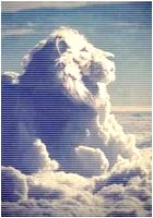 ✖ Avatars ✖ Lionav14