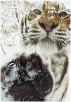 ✖ Avatars ✖ Tigera11