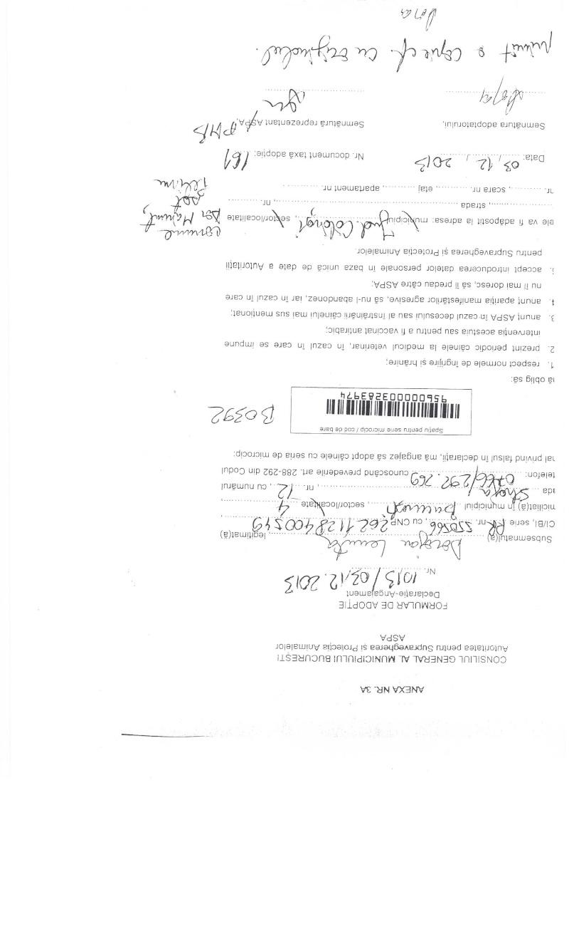 LA VIE COMME CADEAU DE NOEL - 13 CHIENS A SORTIR DE L'EQUARRISSAGE - R - Page 2 Sortie25