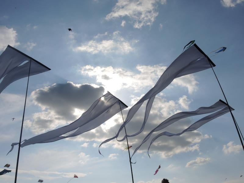 Balade dans la Somme 19, 20 et 21 Avril 2014  Dscn0029
