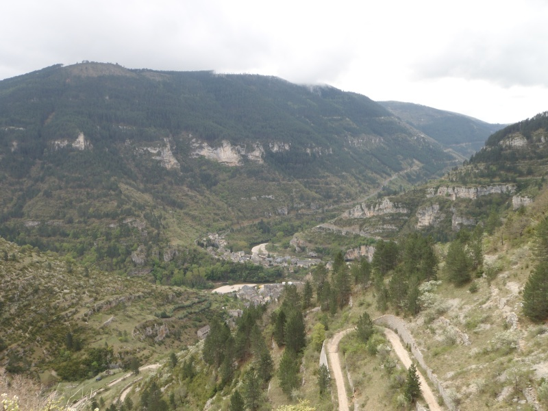 Ardèche, Cévennes et Haute Loire P4210010
