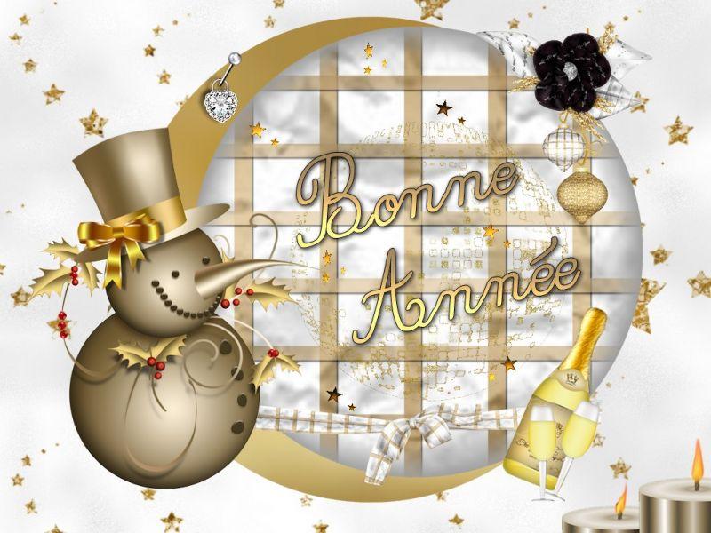 Belles images pour vos souhaits de bonne année  Bonnea10