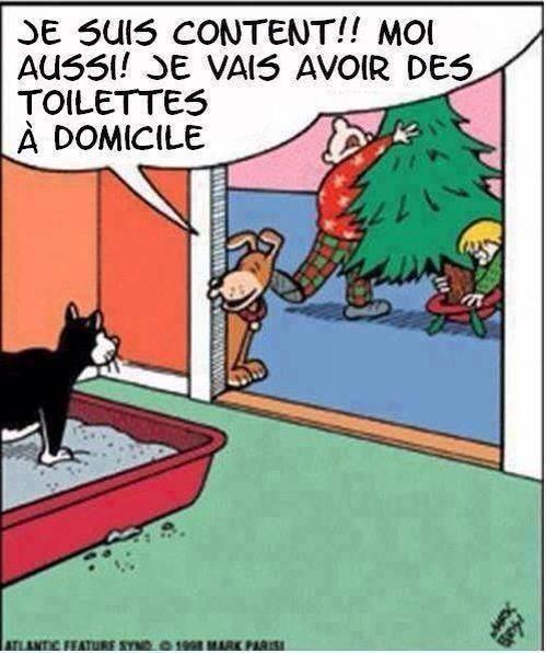 Chiot et sapin de Noël - Page 3 Image34