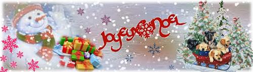 Concours de Packs Noël 2013 - Page 2 Bannie10