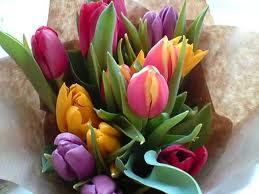 TANTI AUGURISSIMI - Pagina 38 Tulips10