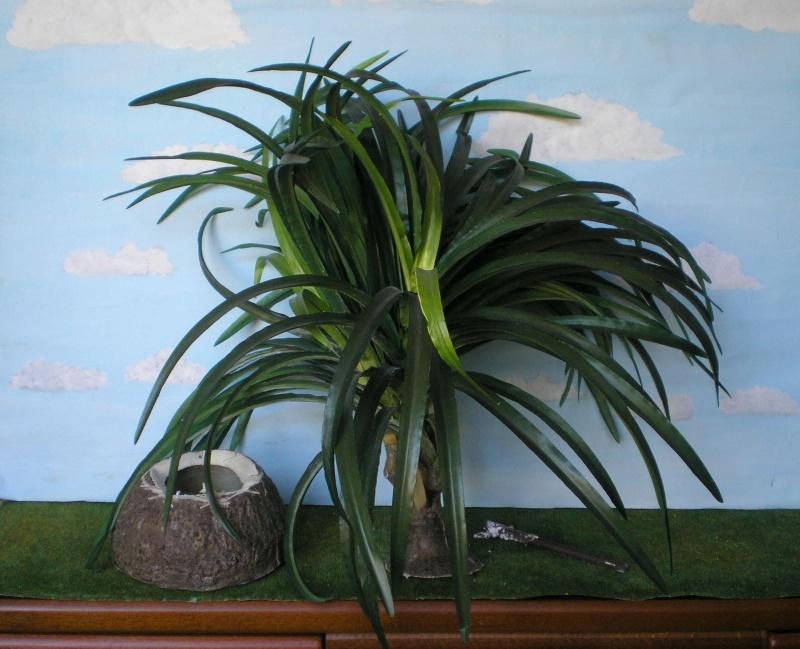 Preiswertes Material zur Pflanzengestaltung 006b_k10