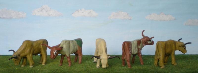 Meine Longhorn-Herde wächst - Seite 2 065g1b10