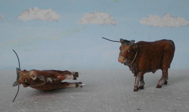 Meine Longhorn-Herde wächst - Seite 2 167b1_10