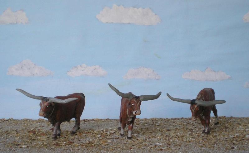 Meine Longhorn-Herde wächst - Seite 2 167c_l10