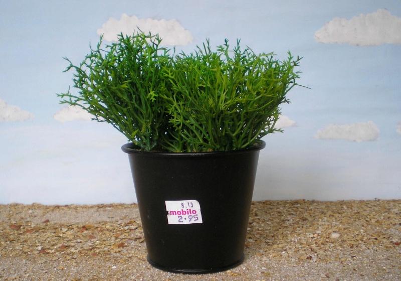 Preiswertes Material zur Pflanzengestaltung Immo_712