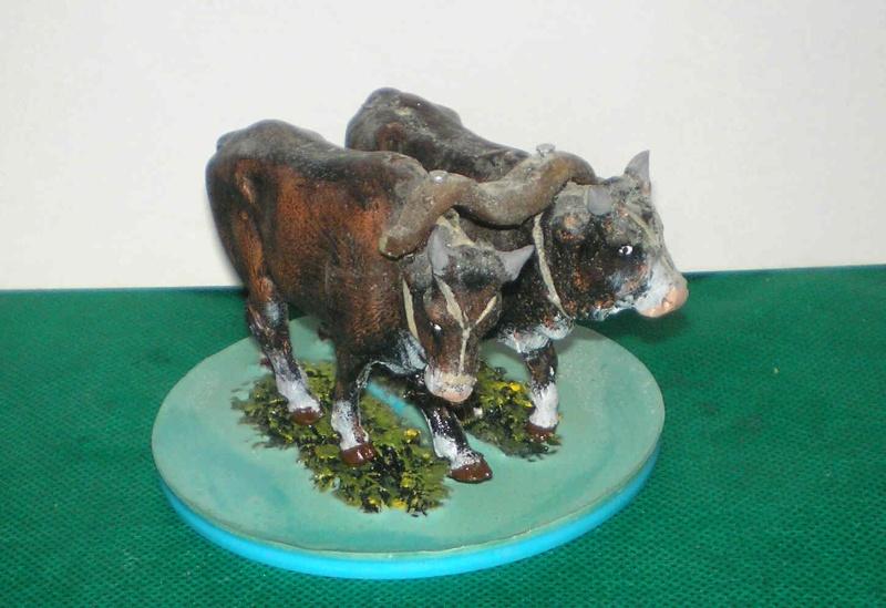 Meine Longhorn-Herde wächst - Seite 2 Zugoch11