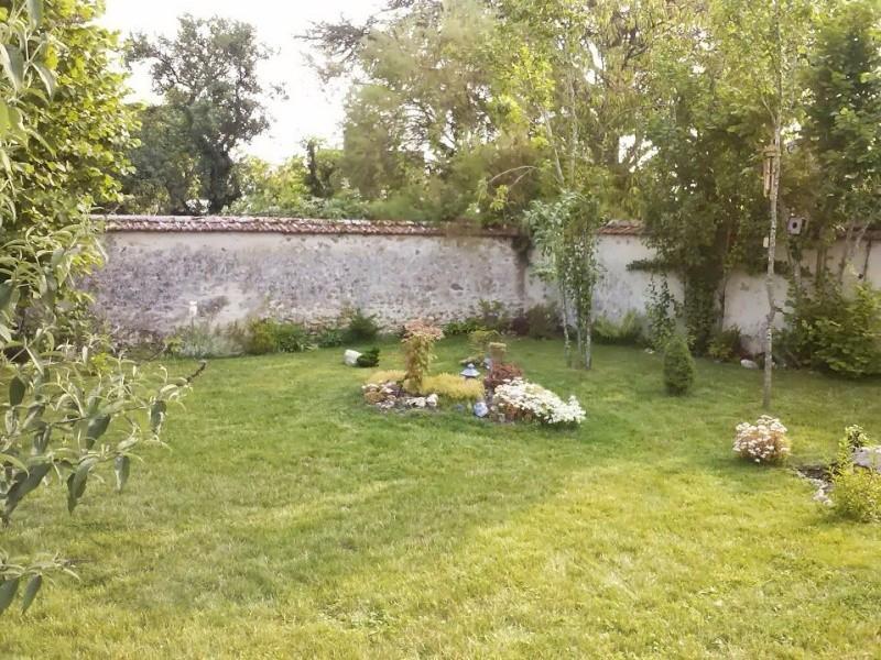 mon ptit jardin - Page 2 10692010